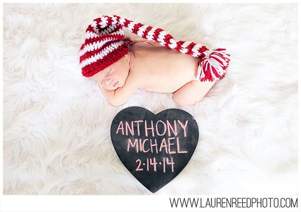 Anthony {Newborn}